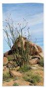 Spiny Cactus East Of Wickenburg Beach Towel
