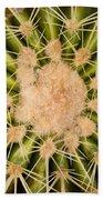 Spiny Cactus Needles Beach Towel