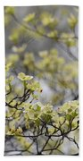 Spirit Of The Dogwood Beach Towel