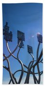 Spirit Of The Staithes Beach Towel