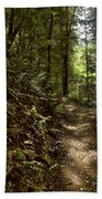 Spirit Of The  Wood Beach Towel