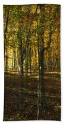 Spirits In The Woods Beach Towel