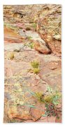 Splash Of Color In Valley Of Fire's Wash 3 Beach Towel