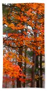 Splashes Of Autumn Beach Towel
