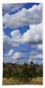 Spokane Cloudscape Beach Towel