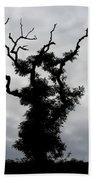 Spooky Tree Beach Sheet