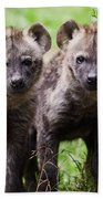 Spotted Hyena Cubs I Beach Towel
