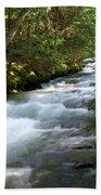 Sprague Creek Glacier National Park 2 Beach Towel