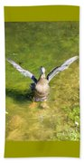 Spread Your Wings Beach Towel