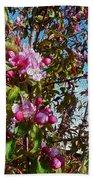 Spring Apple Blossoms- Spring Flowers Beach Towel
