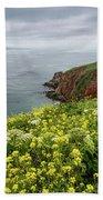 Spring At Chimney Rock Beach Towel