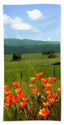 Spring At Gainey Ranch Beach Towel