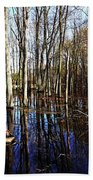 Spring At The Pond Beach Towel