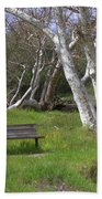 Spring Bench In Sycamore Grove Park Beach Towel