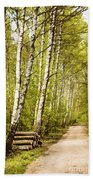 Spring Birches Woods Footpath Beach Towel