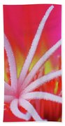 Spring Blossom 19 Beach Towel