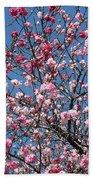 Spring Blossoms Against Blue Sky Beach Towel