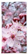 Spring Blossoms Art  Pink Tree Blossom Baslee Troutman Beach Towel