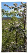 Spring Blossoms Day Beach Towel