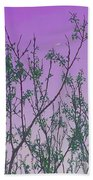 Spring Branches Lavender Beach Towel