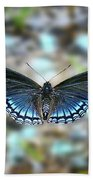 White Admiral Or Red-spotted Purple Beach Towel