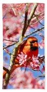 Spring Cardinal Beach Towel
