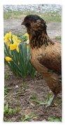 Spring Chicken Beach Towel