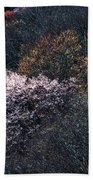 Spring Colors On The Parkway Beach Towel