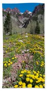 Spring Dandelion And Mountain Landscape Beach Towel