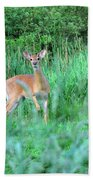 Spring Deer Beach Towel