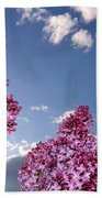 Spring Evening Beach Towel