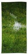 Spring Field Memphis Beach Towel