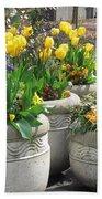 Spring Fling Beach Towel