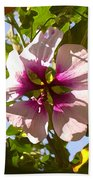 Spring Flower Peeking Out Beach Towel