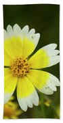 Spring Flowers Shell Road Beach Towel