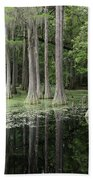Spring Green In Cypress Swamp Beach Towel