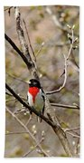 Spring Grosbeak Beach Towel