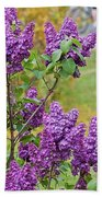 Spring Has Arrived Beach Towel
