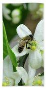 Spring Honey Bee Pollinates Orange Citrus Flower Beach Towel