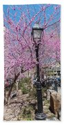 Spring In  Columbus Park 1 Beach Towel