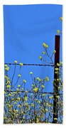 Spring In The Country Beach Towel