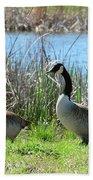 Spring In The Wetlands Beach Towel
