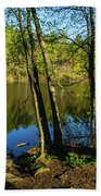 Spring It The Woods Beach Towel
