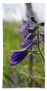 Spring Larkspur Beach Towel