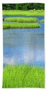 Spring Marsh Grasses Beach Towel