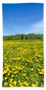 Spring Meadow Full Of Dandelions Flowers And Green Grass Beach Towel