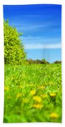 Spring Meadow With Green Grass Beach Towel