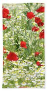 Spring Meadow With Poppy And Chamomile Flowers Beach Towel