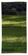 Spring Meadows Of Wildflowers Beach Towel