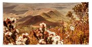 Spring Mountain Blossoms Beach Towel